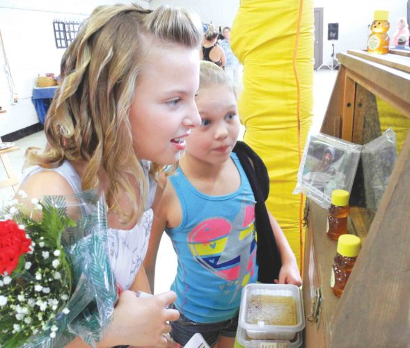 File Photo Nikki Joy, left, and Kennedy Mays, right, look at a display of bee hives during last year's West Virginia State Honey Festival at City Park in Parkersburg.