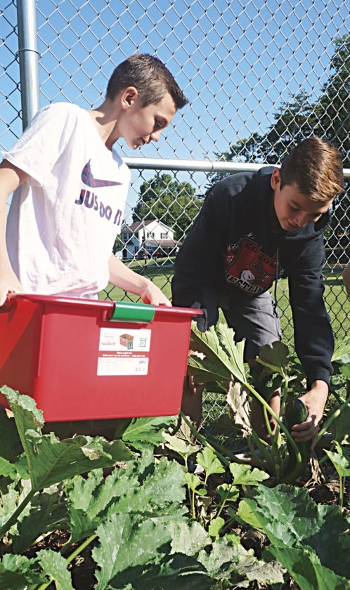 Photo by Michael Erb Edison Middle School eighth-grader Hayden Coull holds a container while classmate Logan Ford picks zucchini Friday in the school's community garden. The students will be growing and selling mums this fall to raise money for the garden program.