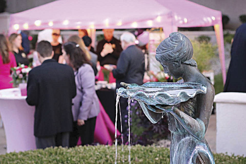 Photo by Tim Turner A record crowd attended the fifth annual  Pink by Poolside fundraiser in Vienna Friday evening.