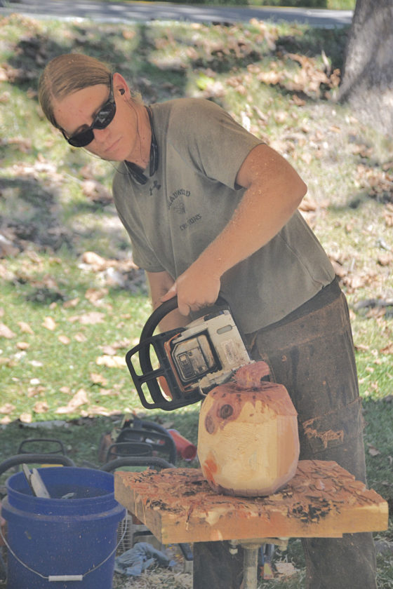 Photo by Brett Dunlap Brad Holbert, of Deadwood Creations, was doing chainsaw carving during the 29th annual Volcano Days at Mountwood Park on Sunday. Many vendors and crafters had displays and were selling items throughout the weekend.
