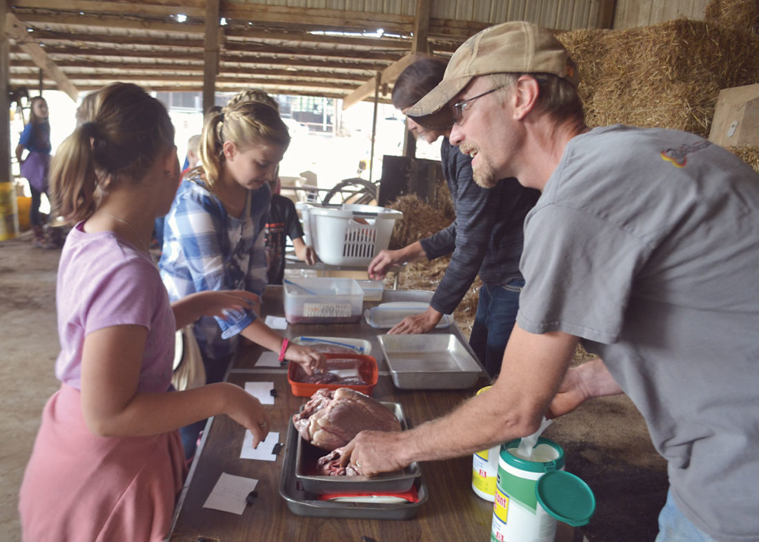 Photo by Michael Kelly A line of fifth-grade students from Washington County schools gets a chance to examine internal organs from livestock at the Schramm Farm near Reno on Friday. Farm neighbor Danny Swartz helped by offering sanitary wipes to students as they finished.