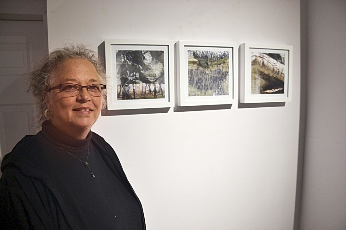 Photo by Brett Dunlap Danette Pratt, of Coolville, is one of the artists featured in the Women of Appalachia Project on display at the Parkersburg Art  Center. Her work features natural plants and dying on fabric.