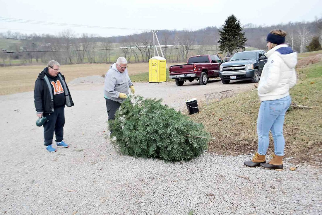 Jim Roberts and his daughter Embrey Roberts watch as Bob Morrison, owner of Caywood Christmas Tree Farm northeast of Marietta, gets ready to hoist the tree they picked onto their vehicle Friday afternoon. (Photo by Michael Kelly)