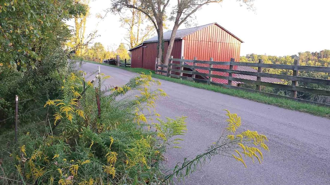 Photo Provided Ronda Knight of St. Marys shot the cover photo for the 2018 Roadsides in Bloom calendar sponsored by the departments of Environmental Protection and Transportation in West Virginia.