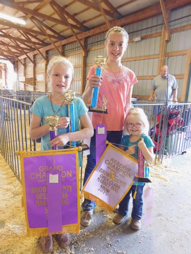 Staff photo by Clay Schuldt Drake Girls: The three Drake sisters pose with all the trophies and ribbons won during Friday's Open Class Swine Show. Each sister took first in their respective class. Mallory (center) took the Senior Showmanship award, Mady (left) took Overall Market Swine and Makely (right) was the reserve champion in Market Barrow.