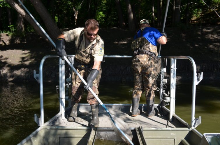 Staff photo by Connor Cummiskey  Windom fisheries technician Luke Rossow (left) deposits a fish into the live well while Windom area supervisor Ryan Doorenbos (right) uses his net to snag another stunned fish out of the water.