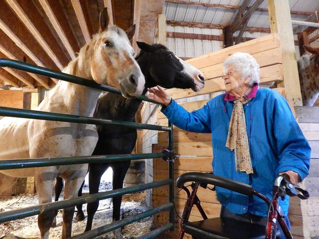 With a little help from her family and friends, 109-year-old New Ulm resident Erna Zahn got up close and personal with some horses earlier this week. The horses were trained and owned by Veleda Cordes at a corral near Courtland, owned by Veleda and Wade Cordes.