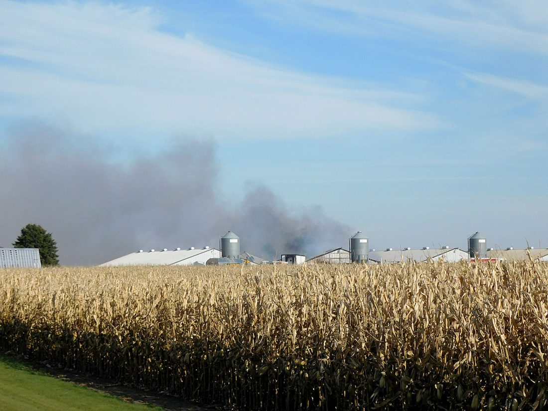 Area Fire Departments responded to a hog barn fire two miles northwest of Sleepy Eye at a Christensen Farm's site. The call came in at 10:54 a.m. By 11:30 a.m. a smoke plume was visible from Highway 14. Fire crews from Sleepy Eye and Comfrey were on the scene fighting the fire.  The cause of the fire is still under investigation. A representative from Christensen Farms said no people or hogs were harmed by the fire.  The extent of the damage is still unknown but the damage was limited to a single building. Christensen Farm's did release the statement that they are grateful for the fire departments quick action in extinguishing the fire.