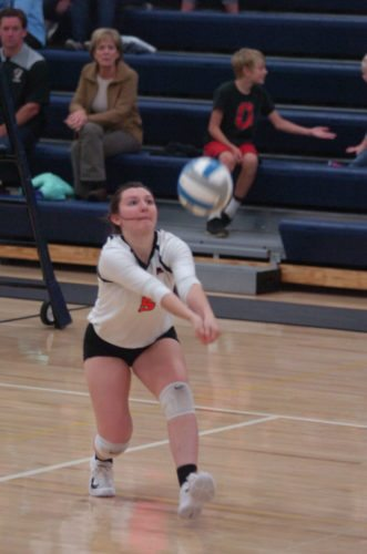 File photo by Steve Muscatello Madelia's Lizzie Cooling was named the All-Journal Volleyball player of the Year.