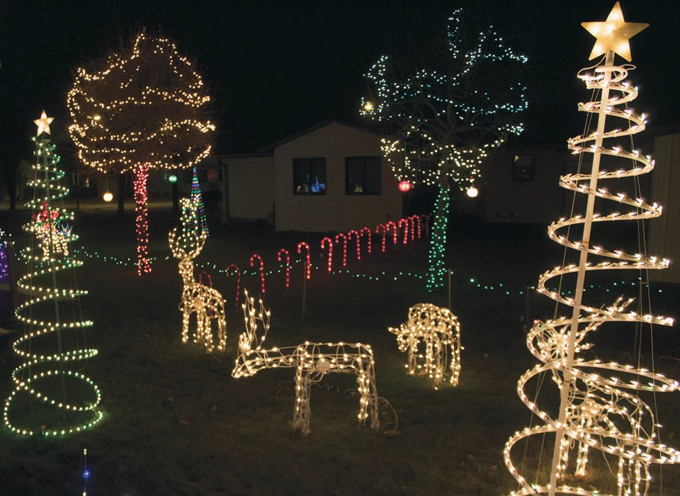 A glimpse into Boyum's decked-out backyard featuring reindeer, a path of lights and several trees made up of lights.