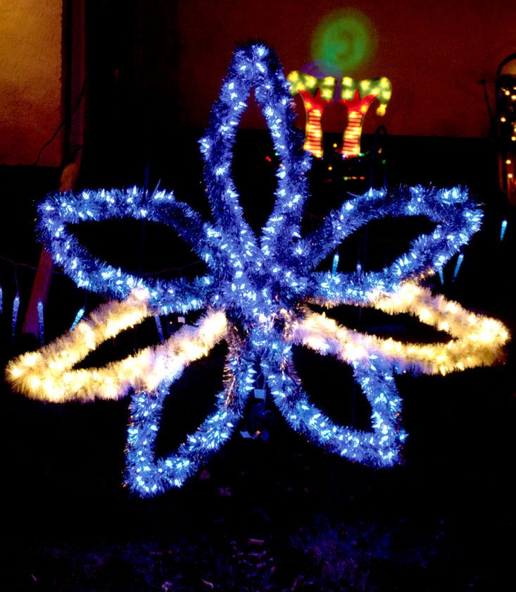One of the poinsettias Boyum made by hand. The homemade poinsettias are some of Boyum's favorite decorations and each took about five hours to make.