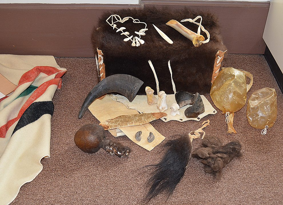 Staff photo by Connor Cummiskey The buffalo box is designed to show how Native Americans used various parts of the buffalo the hunted. On top of the box is a tooth necklace (left), bone awl (middle), and a scraper to pull meat from bone (right). On the bottom right the yellow orbs are bladders used for carrying water, a bone horn (top left on floor), a bladder pouch (middle left), a brown rattle with a hide handle (bottom middle) and various bits of bone, hoof and fur used for toys or decorations.