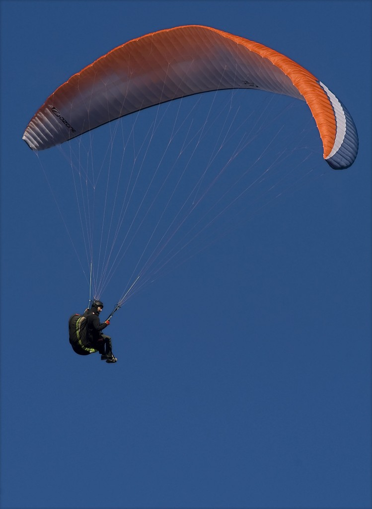 Austin Kasserman, 24, of Reston, paraglides off the Massanutten Mountain east of Woodstock on a recent fall afternoon. Rich Cooley/Daily
