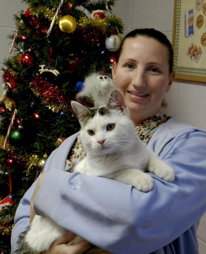 Cheryl Wakeman, animal caretaker at the Shenandoah County Animal Shelter in Edinburg, holds Gonzo the cat. Henry Culvyhouse/Daily
