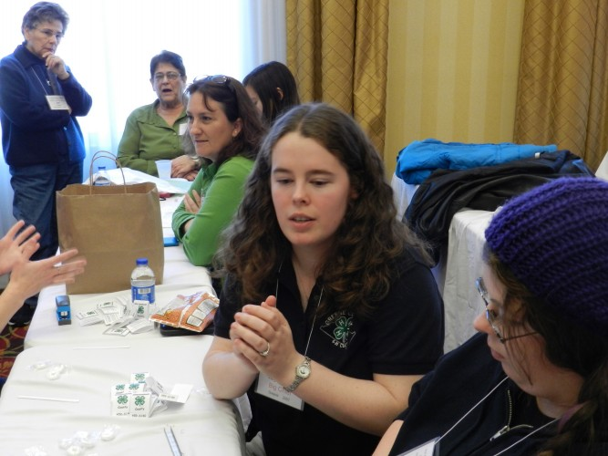 Kayla Eppard, center, 4-H All Star state president, works on a project during a conference in Woodstock on Saturday.  Henry Culvyhouse/Daily