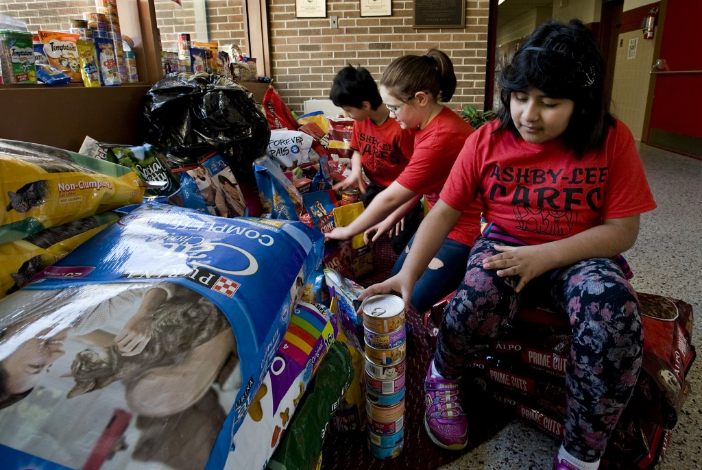 """Ashby Lee Elementary School student Solangh Cuyuch, 8, stacks cat food cans inside the school on Friday while getting help from Nate Sibert, 10, left, and Allie Pool, 8, center, all of New Market. The students have been collecting money and supplies for """"Love Your Animals Month"""" for the Humane Society of Shenandoah County. Rich Cooley/Daily"""