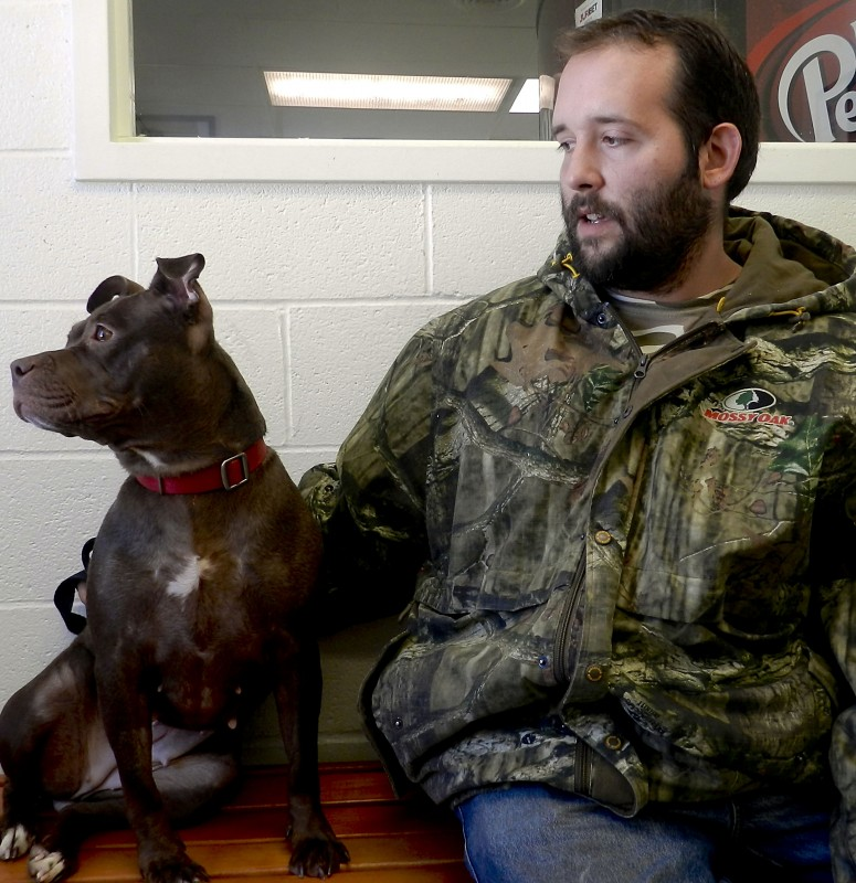 Nina, a pit-Lab mix, sits with Winchester SPCA cat kennel manager Steve Rodgers.   Kevin Green/Daily