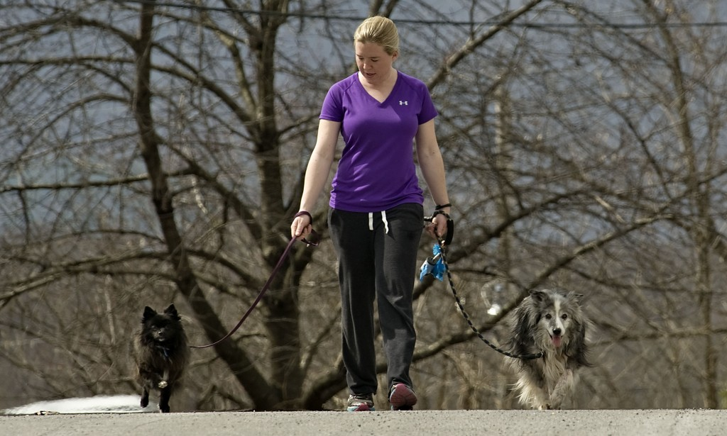 Audrey Schmidt walks Phoebe, left, her Pomeranian,  and Baxter, an Australian shepherd cattle dog,  along this section of West 13th Street near her home in Front Royal on a recent spring-like afternoon. Rich Cooley/Daily