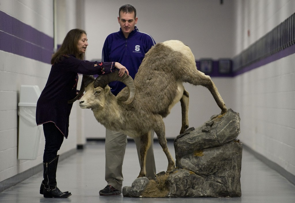 Bernice Rowan, 60, left, of Bluemont, chats with Strasburg High School athletic director Matt Hiserman, right, about the Fannin ram she recently donated to the high school. Rowan, a big-game hunter and a 1972 Strasburg High School graduate, shot the animal during a 2005 hunting trip in Alaska. Rowan, a hunter for 35 years, has hunted in Alaska and Africa and holds the record for the largest brown bear killed in Alaska at 10 1/2 feet tall. The mount will be displayed in the Ram Wall of Fame area showcasing the school's athletes. Rich Cooley/Daily