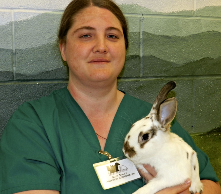 Suzy Daley, adoption manager at the Humane Society of Warren County, is shown with Rascal the rabbit.  Kevin Green/Daily