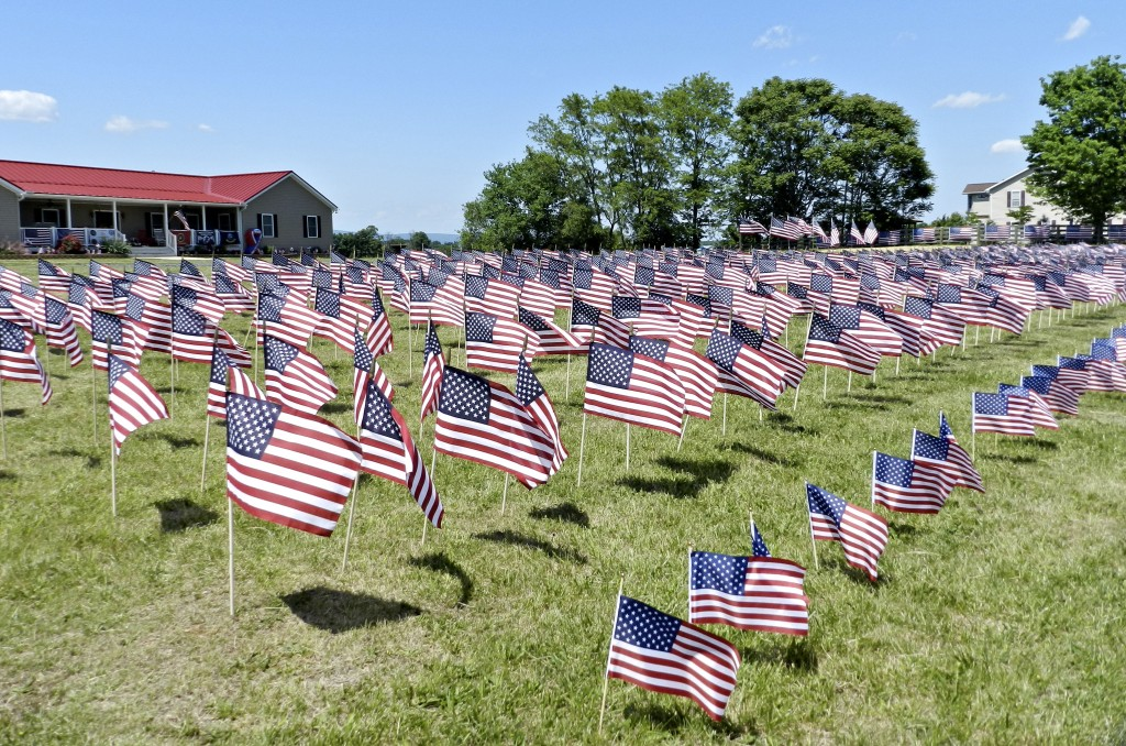 """A total of 1,375 American flags fly in the constant breeze at the Long residence in Strasburg. """"The breath that moves these flags are the dead soldiers that are laying in the ground in all our veteran's cemeteries.""""   Rachel Mahoney/Daily"""