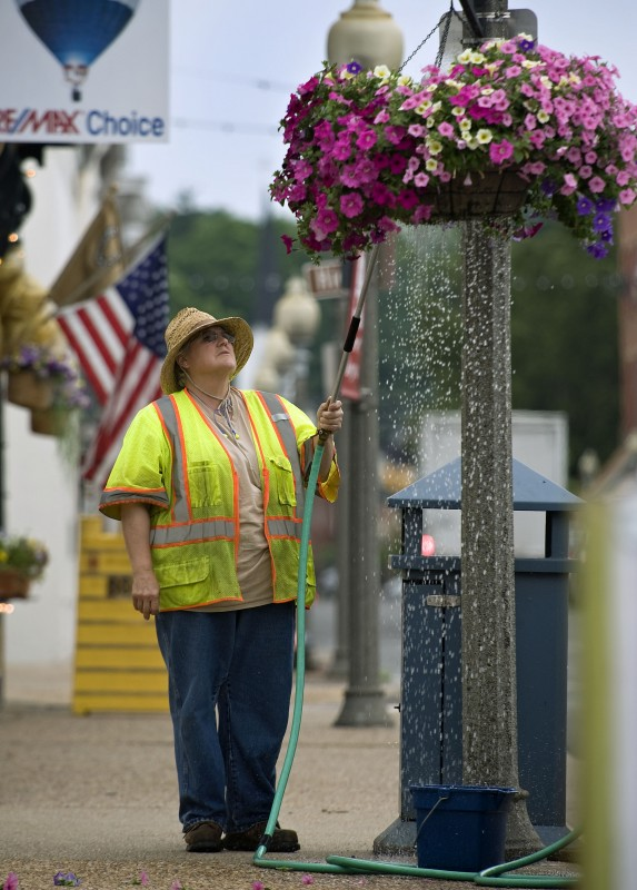 Debbie Moore waters a petunia outside East Main Street in Front Royal. Debbie is employed by the Town of Front Royal's Horticulture Department.  Rich Cooley/Daily