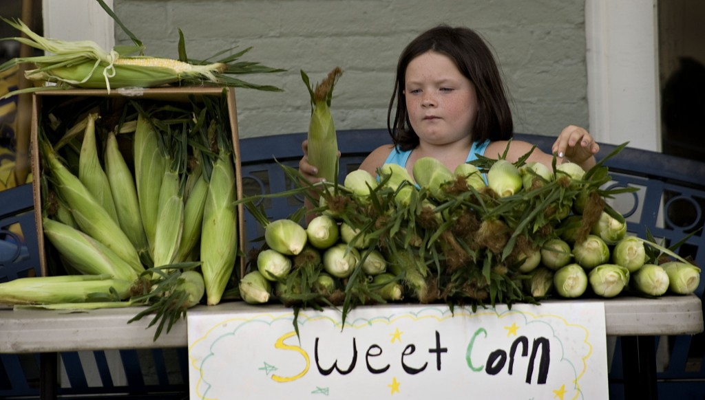 Kenzie Miller, 7, of Edinburg,  sorts a mound of fresh corn that she and her family are selling this week outside Walton and Smoot Drug Store in Woodstock  Kenzie's mother and her great-uncle co-own the store. Rich Cooley/Daily