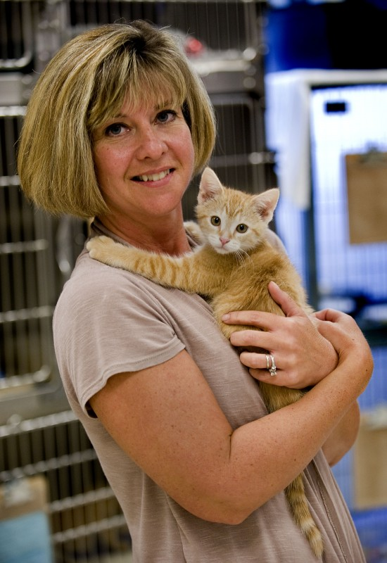 Lavenda Denney, executive director of the Humane Society of Warren County, holds an orange tabby that is one of the many cats and dogs for which the shelter will waive adoption fees as part of the National Clear the Shelters Day on Saturday.  Rich Cooley/Daily