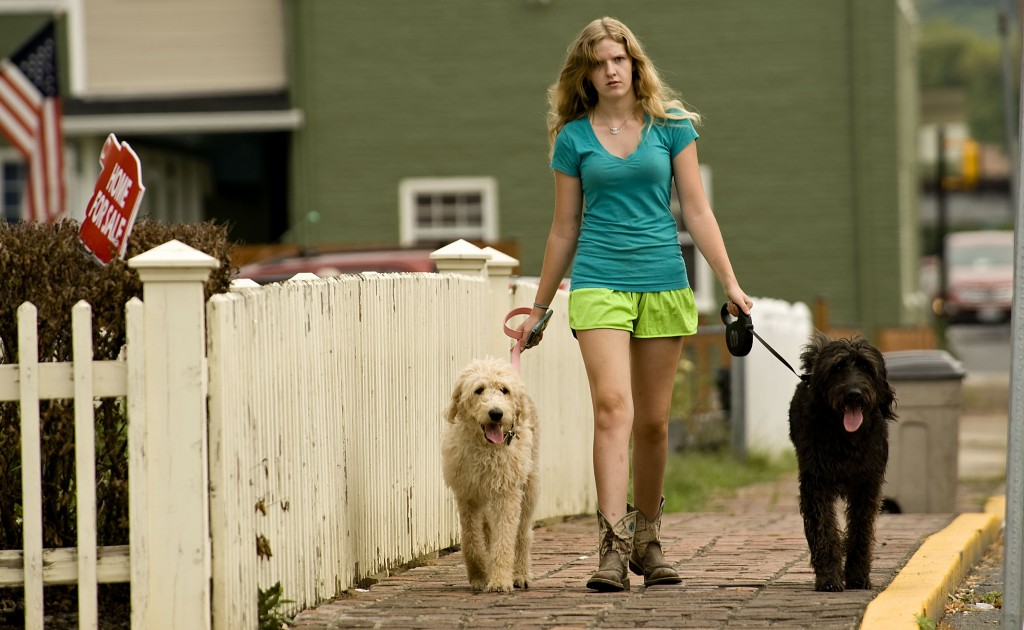 Cora Lee, of Strasburg,  walks her labradoodles Elsa, left, and Buddy Guy, right, along this section of South Massanutten Street in Strasburg on a summer morning. Rich Cooley/Daily