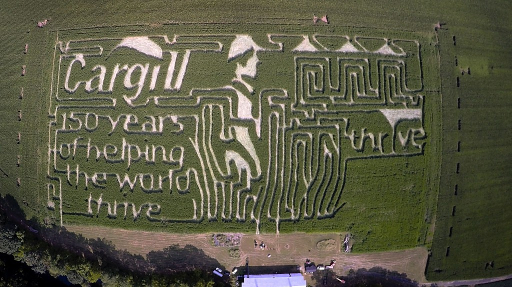 Cargill Inc. sponsored this year's corn maize at Bridgemont Farms in Quicksburg by creating this design and paying for the GPS program that cut it.  Photo courtesy of  Cargill