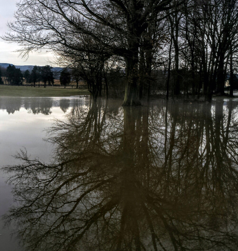 Northern Virginia Daily reader Becky Ryman shot this photo of rising floodwaters along Meadow Drive in Edinburg earlier this week.  Some flooding was reported in the region due to rain and melting snow.  Courtesy photo by Becky Ryman