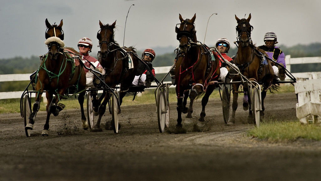 Harness racers make their way along the clubhouse turn in a race at the Shenandoah County Fair last year.  A deal is in the works to bring more harness racing - and  parimutuel betting - to Woodstock. Rich Cooley/Daily file