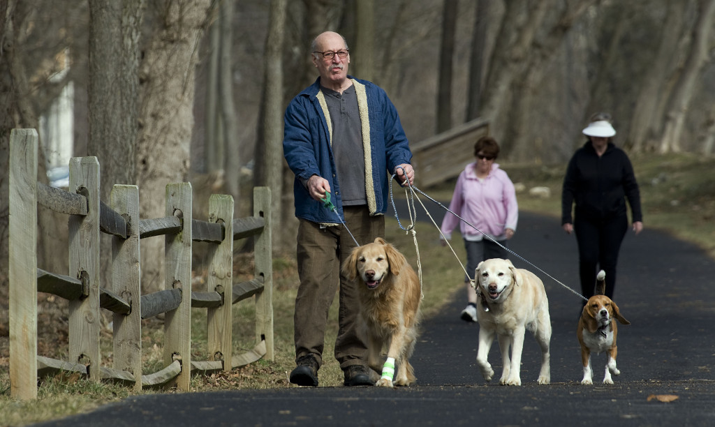 Bob Hill, of Front Royal, walks his dogs, from left, Rusty, Ginger and Bailey, along the River Walk at Eastham Park on a spring-like Monday afternoon.  Rich Cooley/Daily