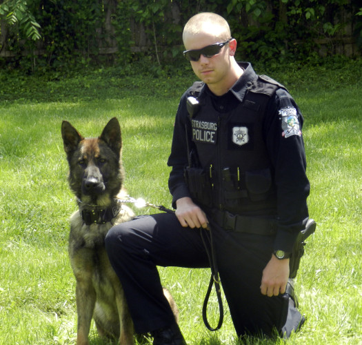 Strasburg police officer Eric Ramey and his partner Argo, an 18-month old German shepherd, are patrolling the town's streets.  Argo is the department's new police dog. Joe Beck/Daily