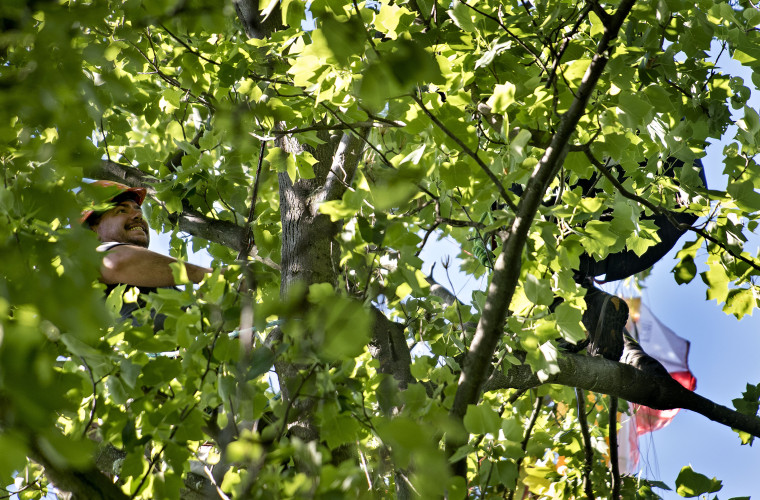 Shenandoah County firefighter/EMT Mike Gochenour, at left, 40, climbs a 100-foot tree off Woodstock Tower Road on Massanutten Mountain to rescue Thomas Boulier, at right, as his feet rest on a tree limb. His paraglider went down after he launched from the mountain top Monday afternoon. Rich Cooley/Daily