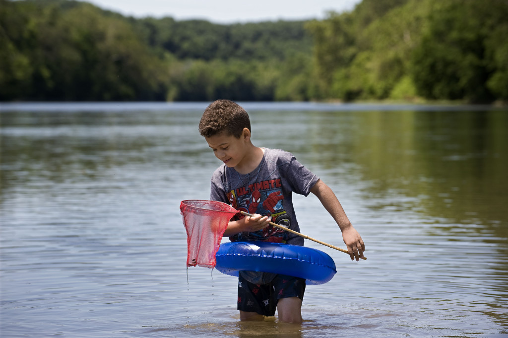 Demontae Craig, 6, of Front Royal, checks his net for critters recently while wading in the South Fork of the Shenandoah River near the Luray Avenue landing in Front Royal. Rich Cooley/Daily