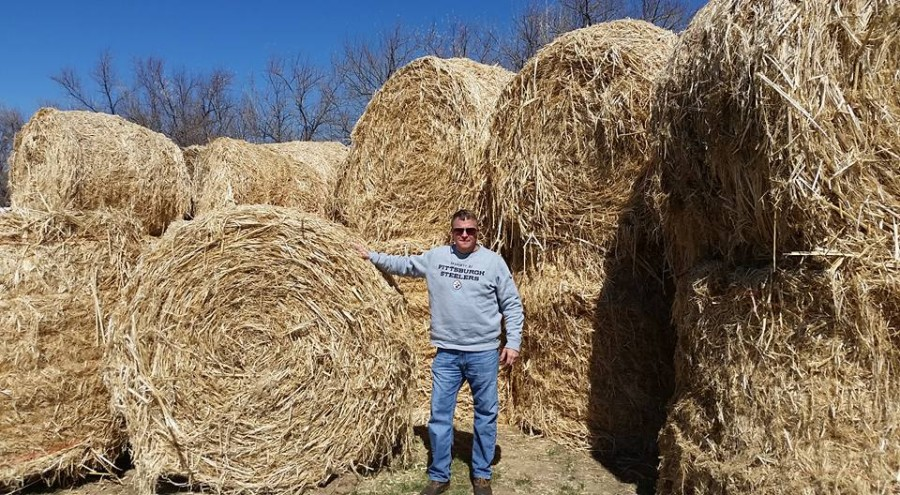 Marty Phipps, owner of Old Dominion Hemp, stands in front of the hemp he imported from Holland. He uses the hemp to make bedding for animals. Courtesy of Marty Phipps