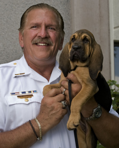 Frederick County Sheriff Lenny Millholland holds the department's new, recently acquired bloodhound puppy. A name for the 9-week-old pup is being stirred on social media, and Millholland will announce a name in a few days.  Rich Cooley/Daily