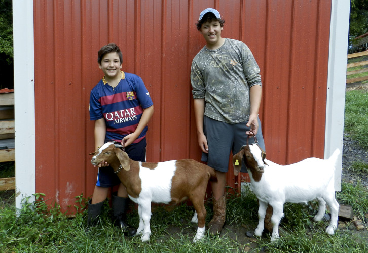 Lorenzo DiRoberto,  left, 13, and his brother, Joseph DiRoberto, pose with their goats, Skit and Tank respectively. Lorenzo will be showing Skit off at the Shenandoah County Fair 4H and FFA Livestock Show, while Joseph will be presenting Tank alongside another goat, Deuce. Jake Zuckerman/Daily