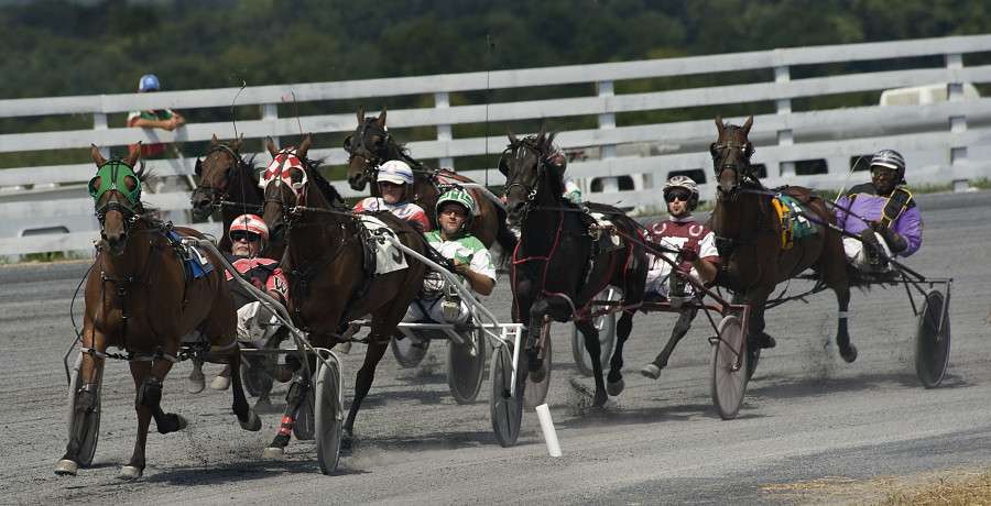 Harness racers make the turn during opening day of racing Wednesday at the Shenandoah County Fair. It was also the opening day for the fair's new track. Rich Cooley/Daily
