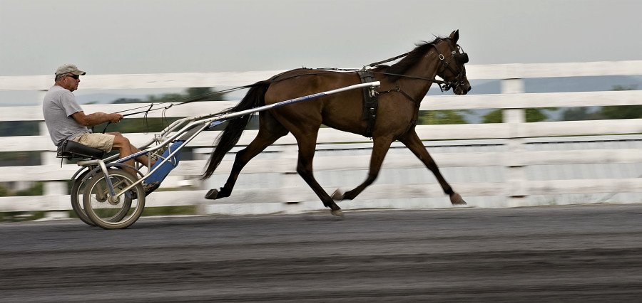 Renfrow Hauser of Mt. Airy, North Carolina, jogs his horse Not Thelma But Louise around the Shenandoah Downs track at the Shenandoah County Fairgrounds on Wednesday. Shenandoah Downs will feature five weeks of harness racing starting this Saturday. The  Rich Cooley/Daily