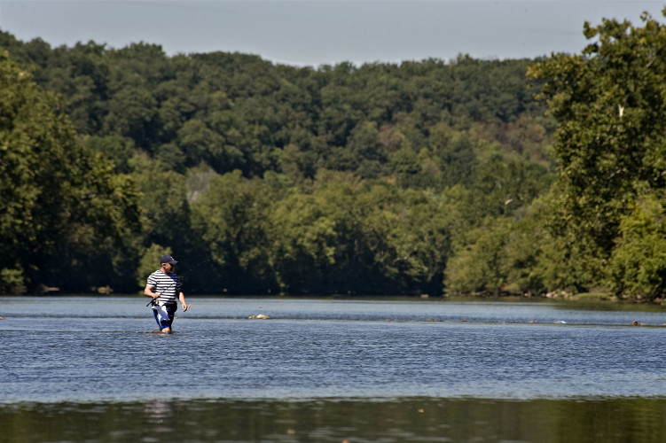 Ivica Scalina of Alexandria wades through the South Fork of the Shenandoah River in Front Royal while fishing on Monday.  Rich Cooley/Daily
