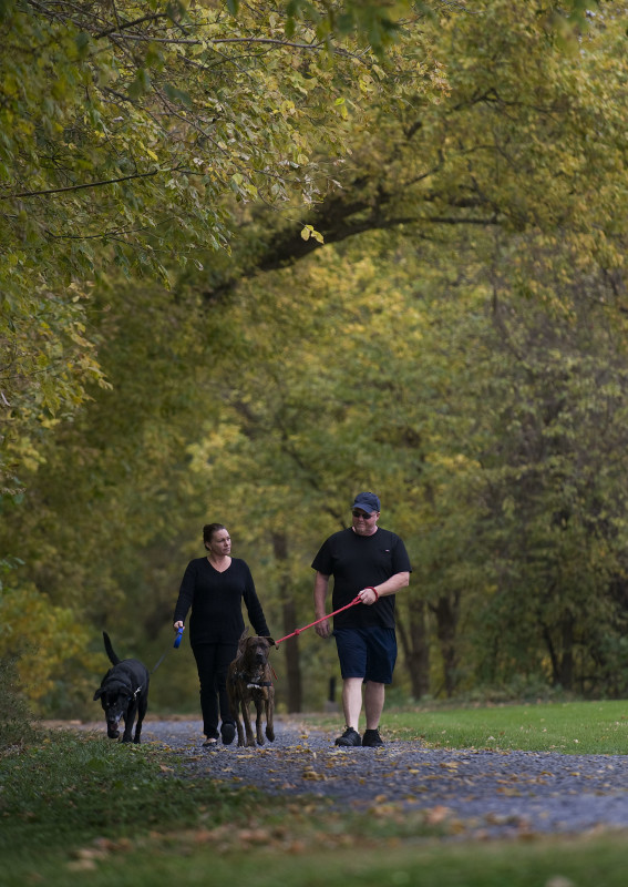 Tina Broers, left, and Gary Funk walk their dogs Tyson, left, and Zeus along the River Walk at Strasburg Town Park on a recent fall morning. Rich Cooley/Daily