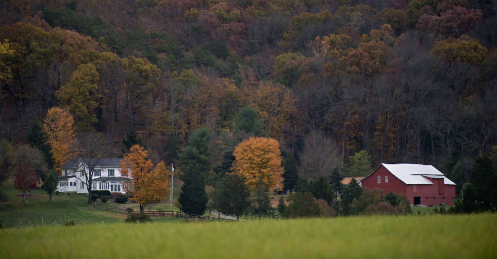 Muted fall colors highlight a farm scene off Sandy Hook Road near Strasburg. Rich Cooley/Daily
