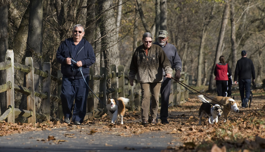 From left, Steve Rosenberry and his dog Buddy, Beatrice Miller and her dogs Milo and Mindy, and Willard Hodges Frame walk along a section of the Eastham Park Trail in Front Royal on a recent fall morning.  Temperatures are expected to drop Saturday as a cold front moves into the region. Rich Cooley/Daily
