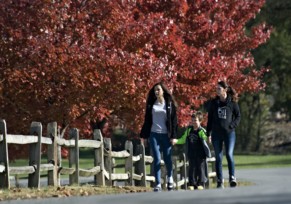 From left, Alexis Bennecoff, 13, Thomas Hayes, 5, and Alexis's mother Jessica Rose, all of  Warrenton, walk along a section of trees in Bing Crosby Park in Front Royal. Most fall color has passed its peak with a few trees still showing their colors. Rich Cooley/Daily