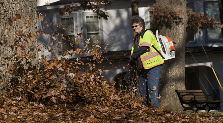 Anne Rose, supervisor for Front Royal's horticulture department, uses a leaf blower to gather the leaves at Bowman Park along Luray Avenue. Rich Cooley/Daily