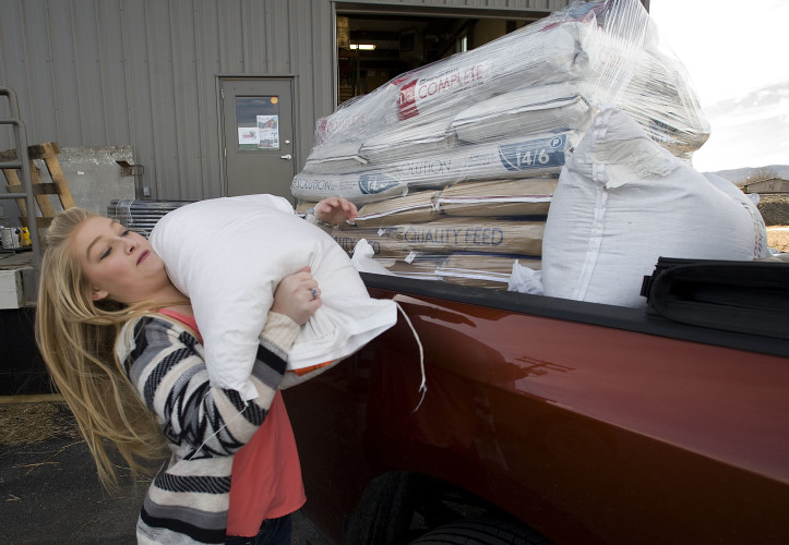 Tiffany Heishman, 15, a Lebanon Church 4H Club member, heaves a bag of feed into the family truck outside Rockingham Coop in Strasburg on Thursday. Tiffany sought out donations of livestock supplies and feed throughout the town for 4H families that suffered losses in the Gatlinburg, Tennessee, area due to a fire. Rich Cooley/Daily