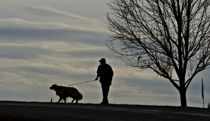 Danny Strother, of Maurertown, and his dog Zoe take an afternoon walk through the Shenandoah County Park in Maurertown after a late afternoon rain shower on Tuesday.  Rich Cooley/Daily