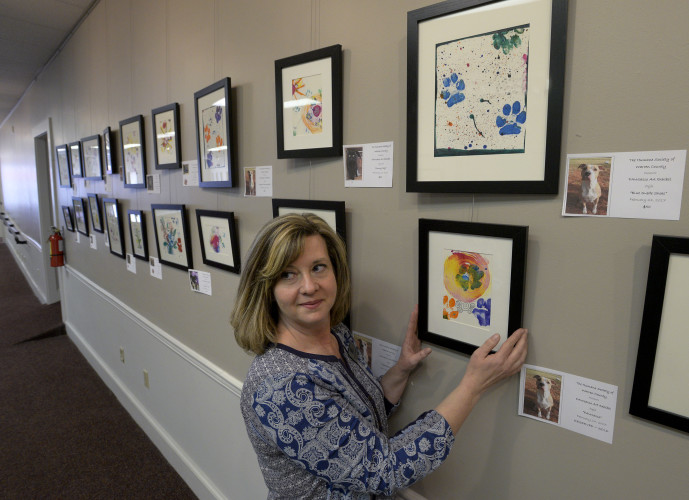 Lavenda Denney, executive director of the Humane Society of Warren County, hangs a piece of artwork for the shelter's PAWcasso  on exhibit at Blue Ridge Art Gallery in Front Royal. The fundraiser features artwork  created with shelter pets and staff and can be purchased at the end of the show Friday.   Rich Cooley/Daily